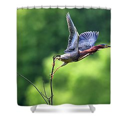 Release Point Shower Curtain