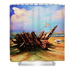 Relic Washed Ashore Shower Curtain