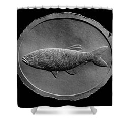 Relief Drawing Of A Freshwater Fish Shower Curtain