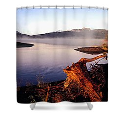 Remains Of The Day Shower Curtain