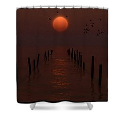 Remains Of The Pier... Shower Curtain by Tim Fillingim
