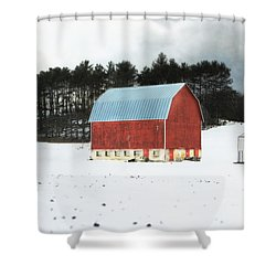 Shower Curtain featuring the photograph Rembering The Good Old Days by Julie Hamilton