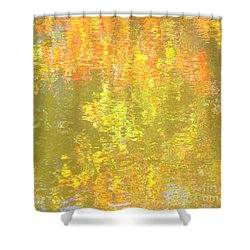 Remedy Shower Curtain