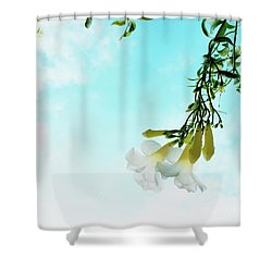 Shower Curtain featuring the photograph Remember by Cindy Garber Iverson