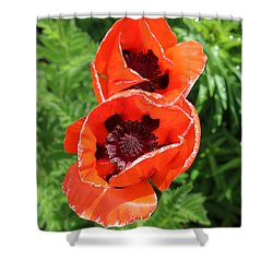Remember Red 1 Shower Curtain