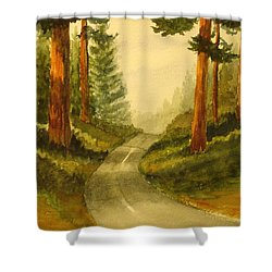 Remembering Redwoods Shower Curtain by Marilyn Jacobson