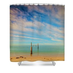 Remenants Shower Curtain