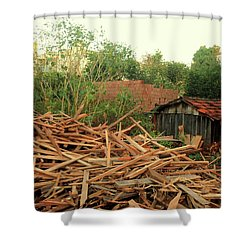 Shower Curtain featuring the photograph Remnants by Beto Machado