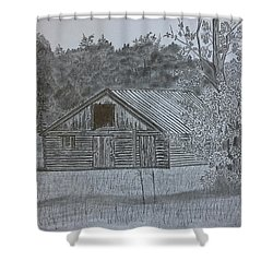 Remote Cabin Shower Curtain