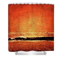Renaissance Shower Curtain by Andrew Paranavitana