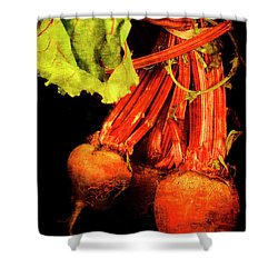 Renaissance Beetroot Shower Curtain