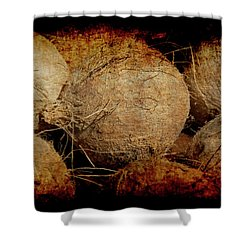 Renaissance Coconut Shower Curtain