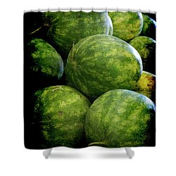 Renaissance Green Watermelon Shower Curtain