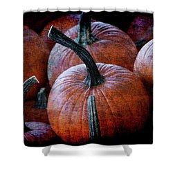 Renaissance Pumpkins Shower Curtain