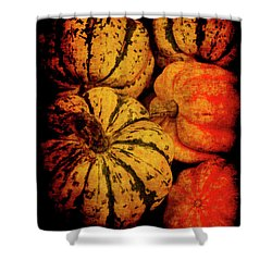 Renaissance Squash Shower Curtain