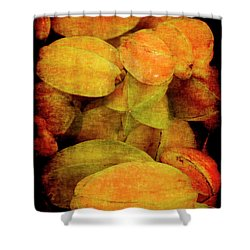 Renaissance Star Fruit Shower Curtain