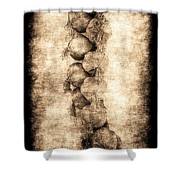 Renasiaance Garlic Shower Curtain