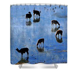 Shower Curtain featuring the photograph Rendezvous by Skip Hunt