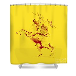 Renegade And Chief Osceola Shower Curtain by Paul  Wilford