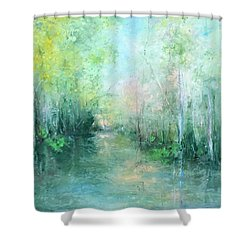 Reoccurring Dream Shower Curtain