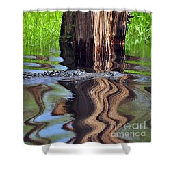 Shower Curtain featuring the photograph Reptile Ripples by Al Powell Photography USA