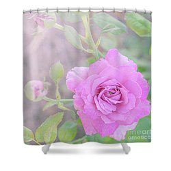 Shower Curtain featuring the photograph Resilient Rose by Cindy Garber Iverson