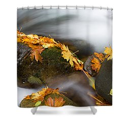 Respite Shower Curtain by Mike  Dawson