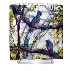 Resplendent Quetzal #1 Shower Curtain