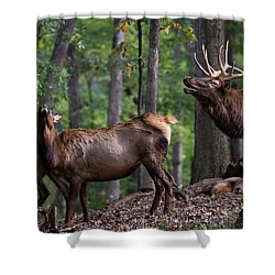 Responding To The Call Shower Curtain