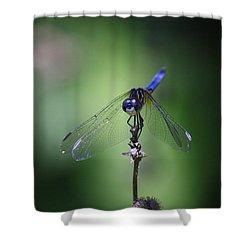Rest Shower Curtain
