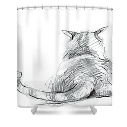 Resting Cat Shower Curtain