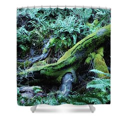 Resting Comfortably Shower Curtain by Donna Blackhall