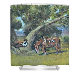 Shower Curtain featuring the painting Resting Cowboy Painting A Study by  Luczay