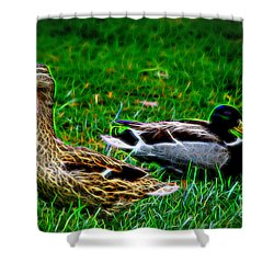 Shower Curtain featuring the photograph Resting Ducks by Mariola Bitner