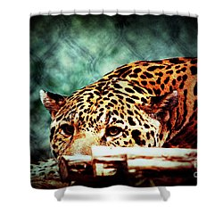 Resting Jaguar Shower Curtain