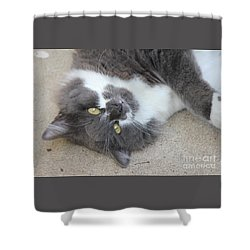 Resting Ms Mustache Shower Curtain