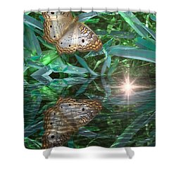 Resting On River's Edge Shower Curtain