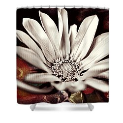 Shower Curtain featuring the photograph Restrained Vibrancy  by Kelly Nowak