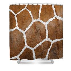Reticulated Giraffe #2 Shower Curtain