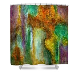 Revelry - Fat Tuesday Shower Curtain by Jim Whalen