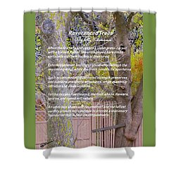 Reverence Of Trees Shower Curtain