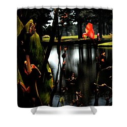 Reverie In Color Shower Curtain