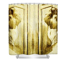 Reversed Mirror Shower Curtain by Andrea Barbieri