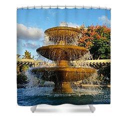 Revitalize  Shower Curtain