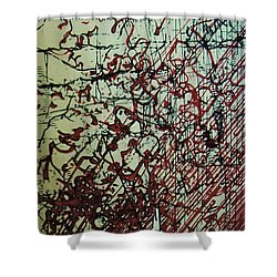 Rfb0204 Shower Curtain