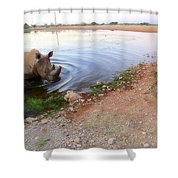 Rhino Cheetah Confrontation Shower Curtain