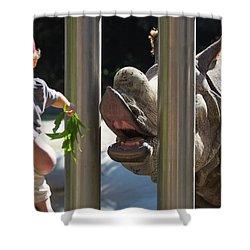 Rhino Eating Grass Shower Curtain