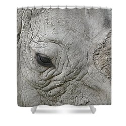 Rhino Eye Shower Curtain
