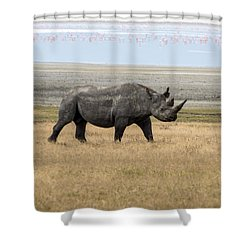 Shower Curtain featuring the photograph Rhino In Ngorongoro by Pravine Chester