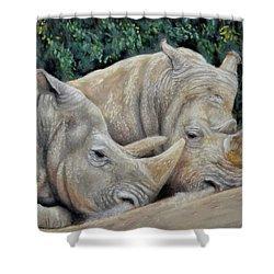 Rhinos Shower Curtain by Sam Davis Johnson